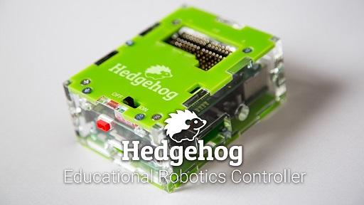 hedgehog50